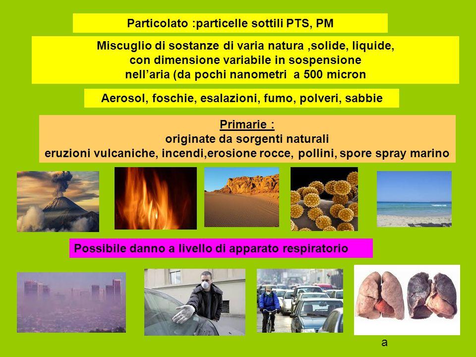 Particolato :particelle sottili PTS, PM
