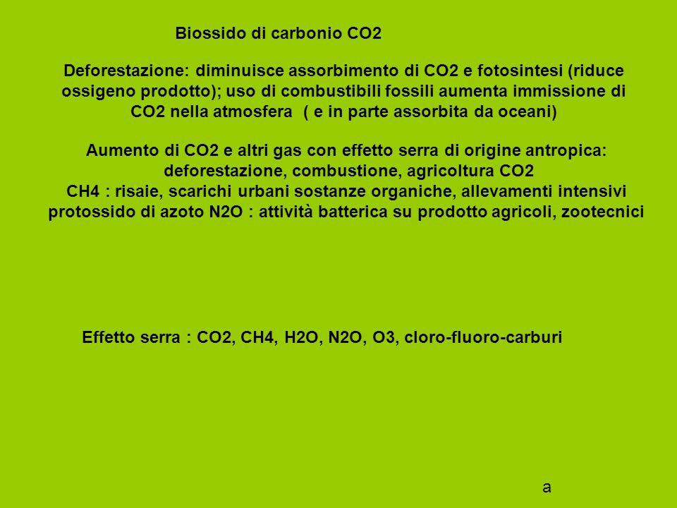 Effetto serra : CO2, CH4, H2O, N2O, O3, cloro-fluoro-carburi
