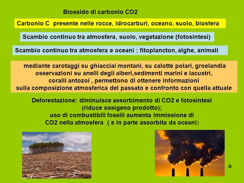 Biossido di carbonio CO2