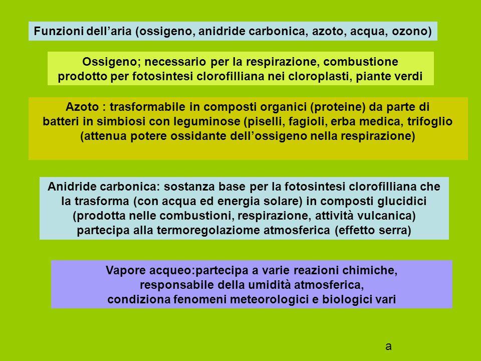 Funzioni dell'aria (ossigeno, anidride carbonica, azoto, acqua, ozono)