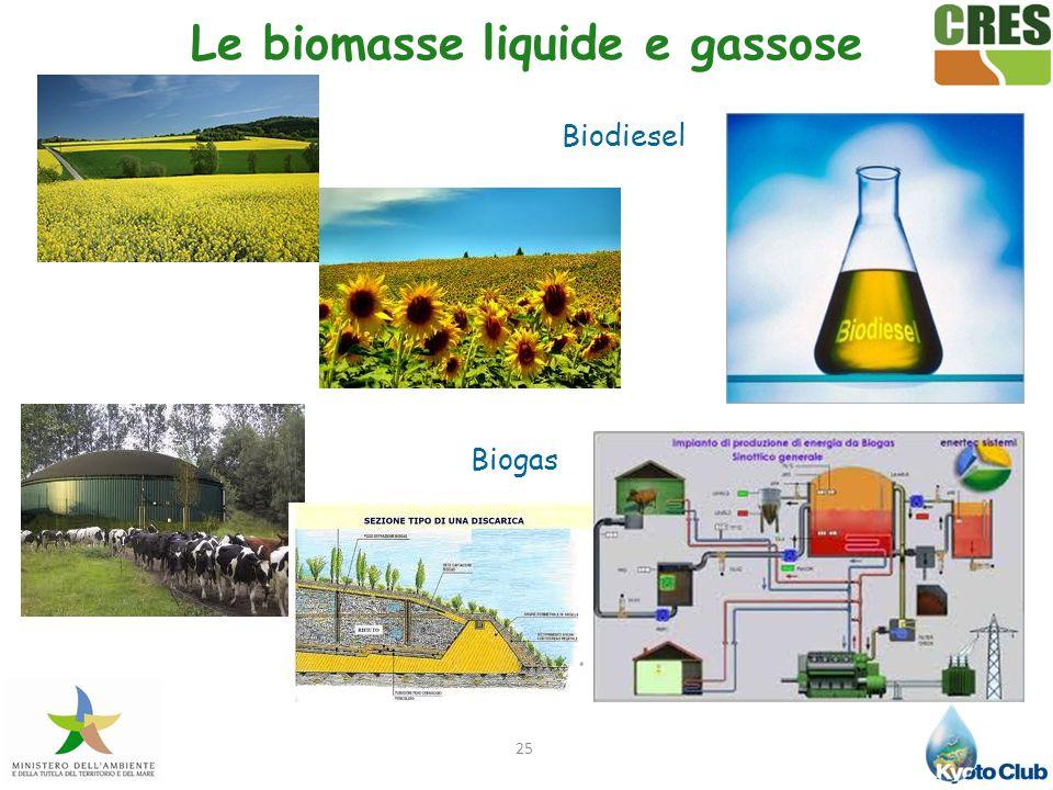 Le biomasse liquide e gassose