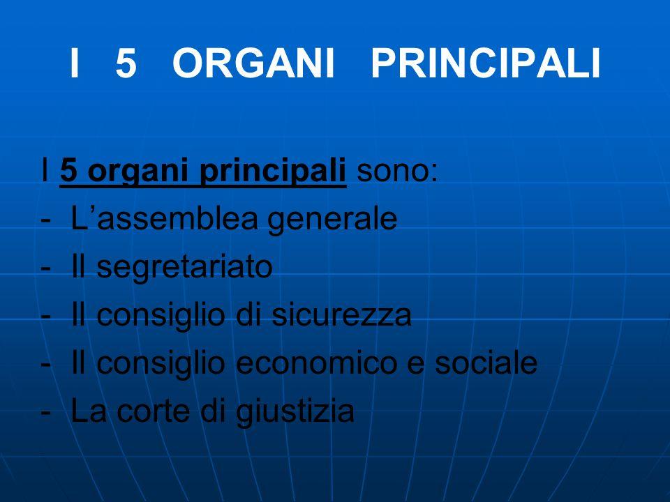 I 5 ORGANI PRINCIPALI I 5 organi principali sono: