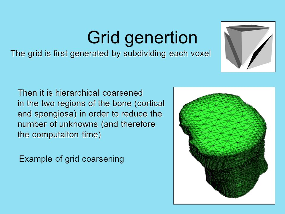 The grid is first generated by subdividing each voxel