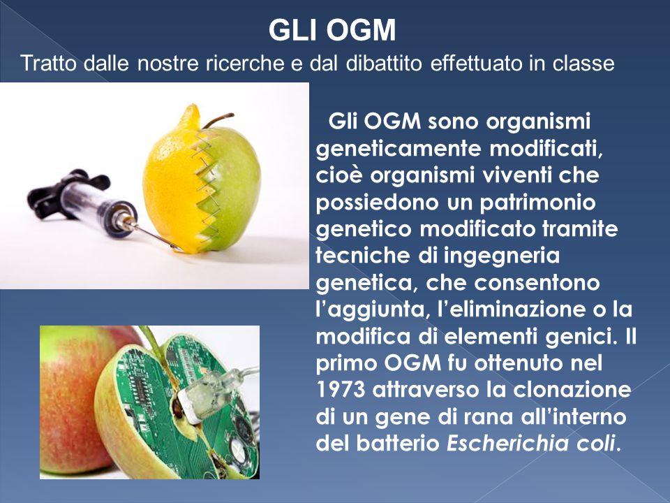 GLI OGM Tratto dalle nostre ricerche e dal dibattito effettuato in classe.