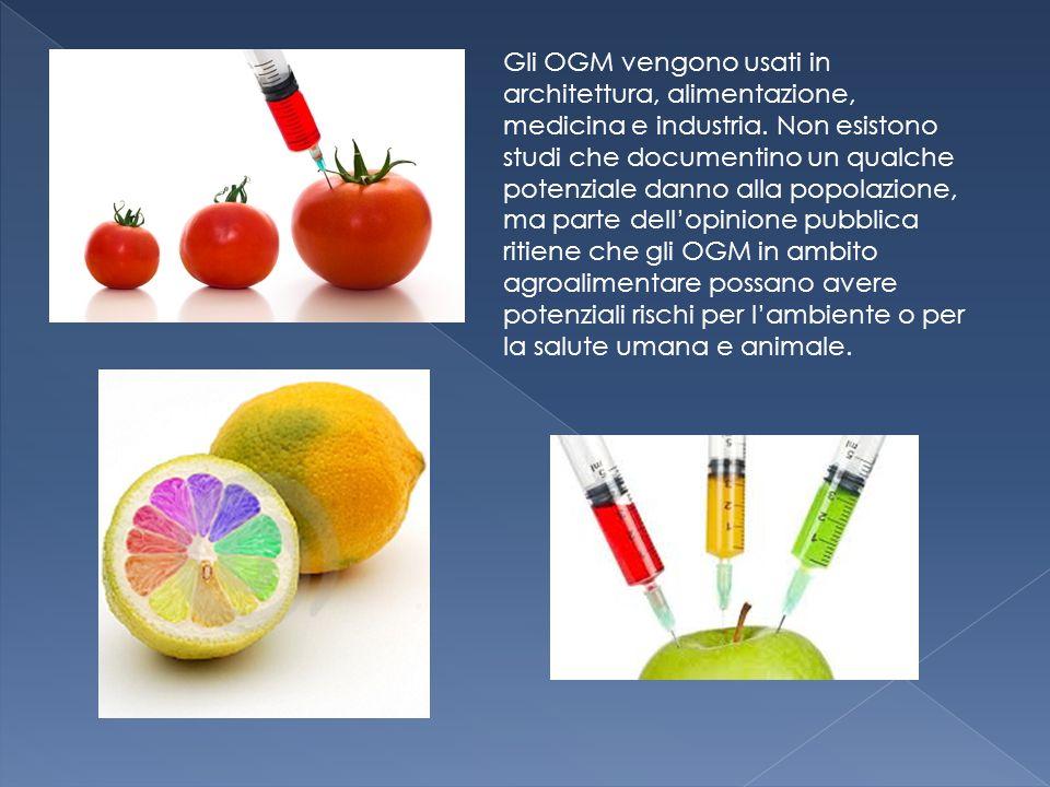 Gli OGM vengono usati in architettura, alimentazione, medicina e industria.