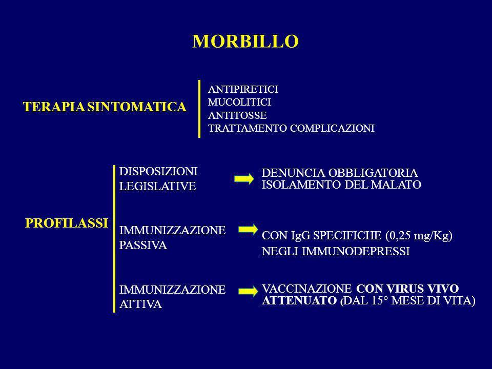 MORBILLO TERAPIA SINTOMATICA PROFILASSI