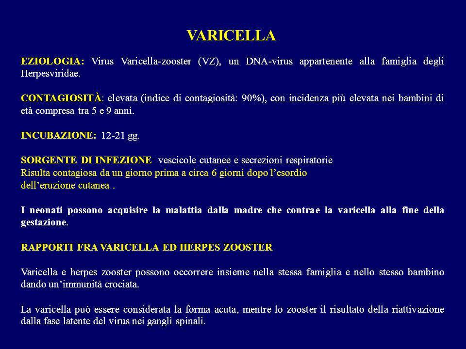 VARICELLAEZIOLOGIA: Virus Varicella-zooster (VZ), un DNA-virus appartenente alla famiglia degli Herpesviridae.