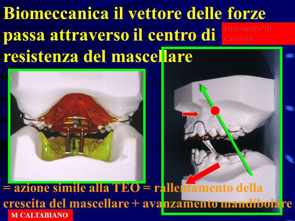 Biomeccanica il vettore delle forze passa attraverso il centro di resistenza del mascellare