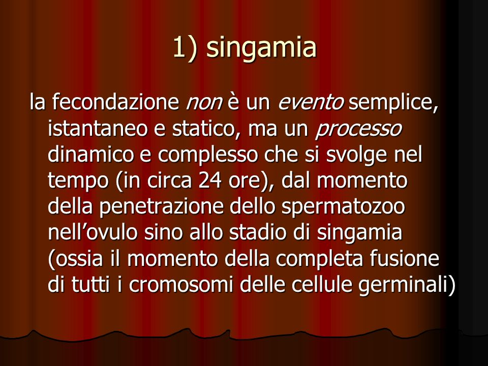 1) singamia