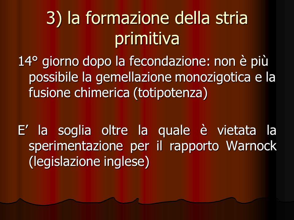 3) la formazione della stria primitiva