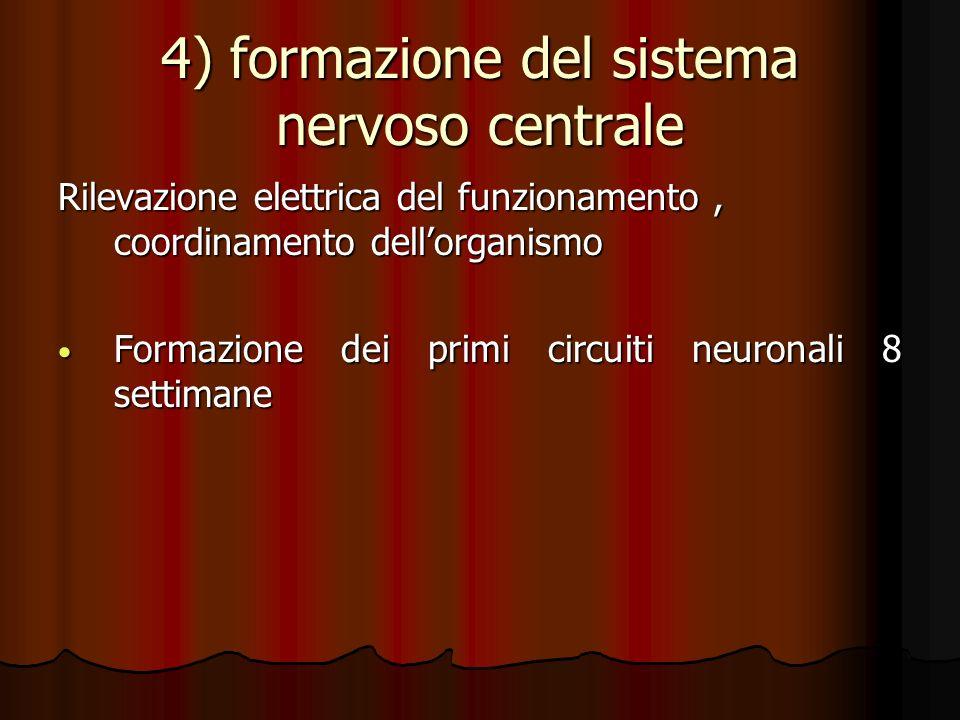 4) formazione del sistema nervoso centrale