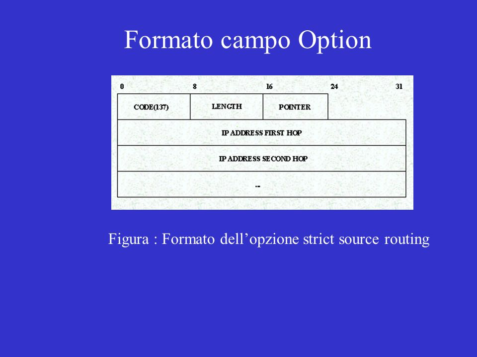 Formato campo Option Figura : Formato dell'opzione strict source routing