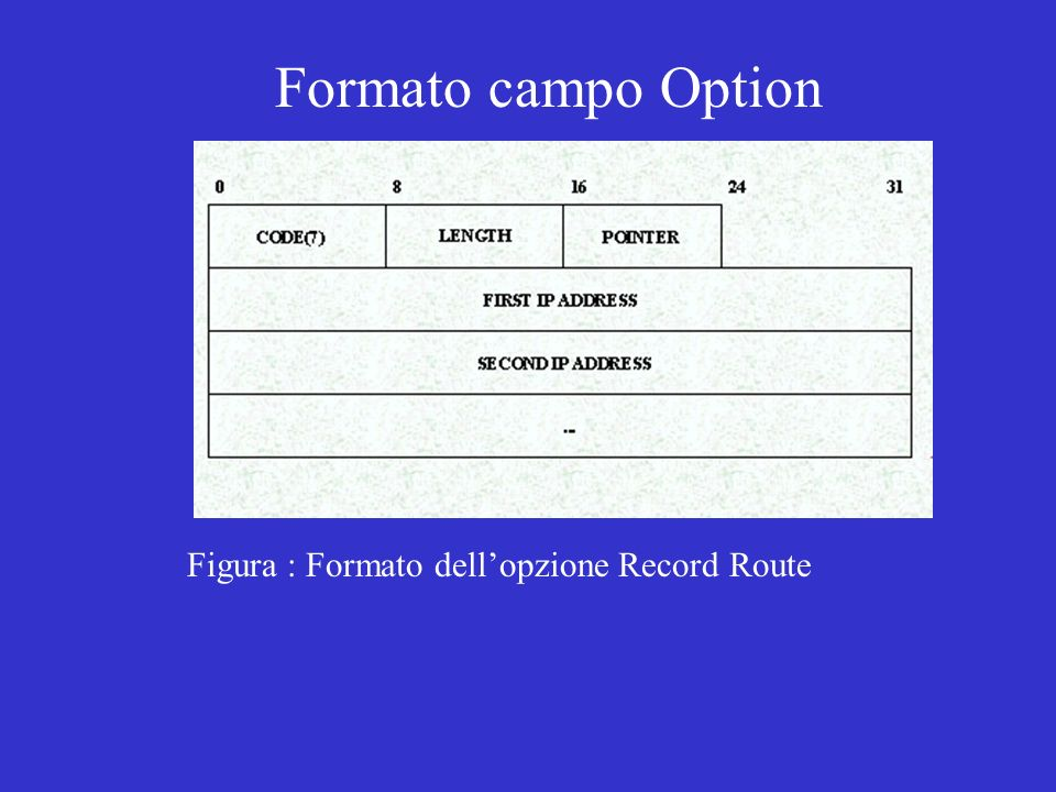 Formato campo Option Figura : Formato dell'opzione Record Route