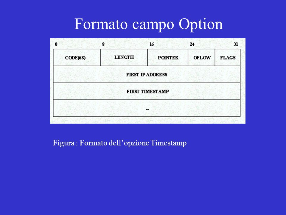 Formato campo Option Figura : Formato dell'opzione Timestamp