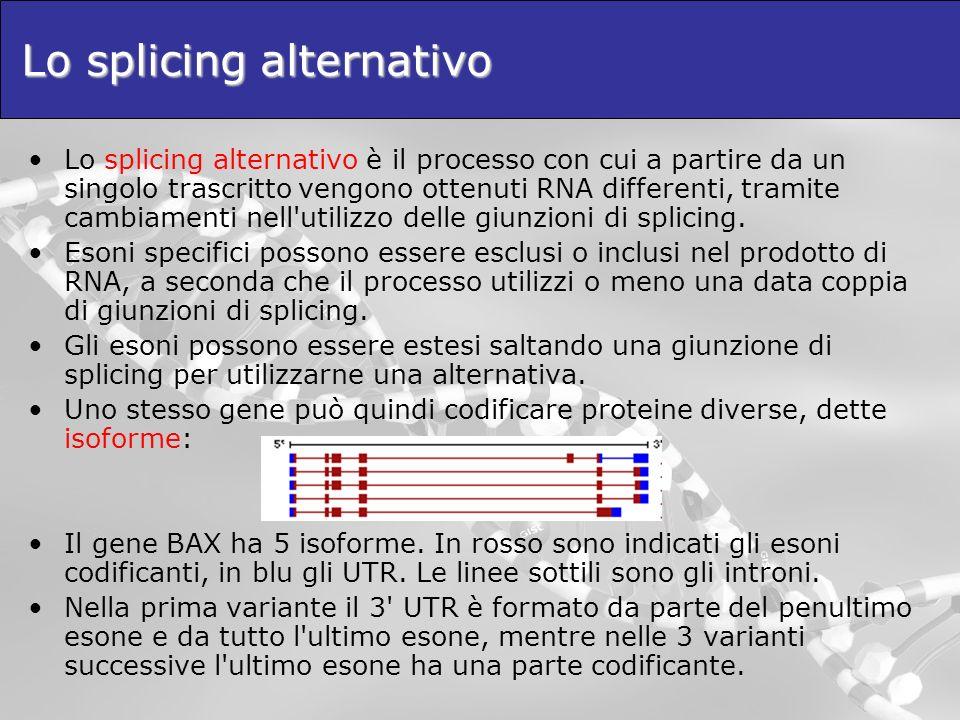 Lo splicing alternativo