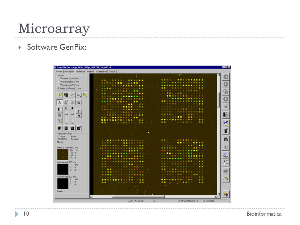 Microarray Software GenPix: Bioinformatica