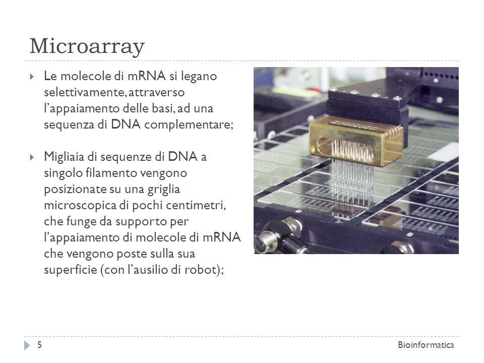 Microarray Le molecole di mRNA si legano selettivamente, attraverso l'appaiamento delle basi, ad una sequenza di DNA complementare;