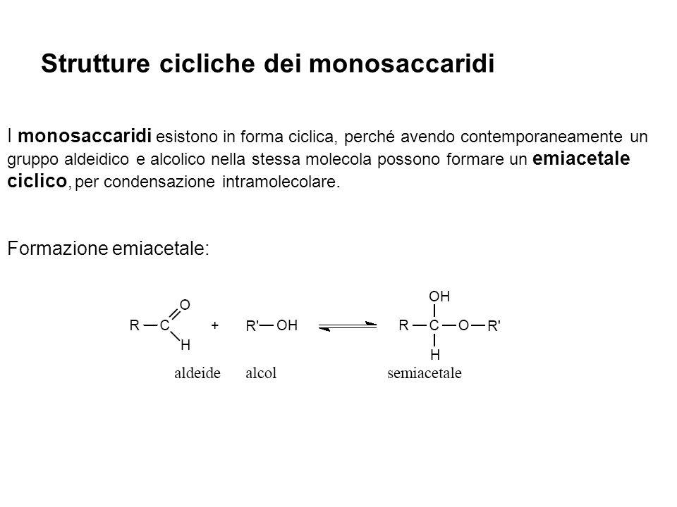 Strutture cicliche dei monosaccaridi
