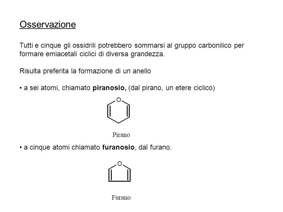 Osservazione Tutti e cinque gli ossidrili potrebbero sommarsi al gruppo carbonilico per formare emiacetali ciclici di diversa grandezza.