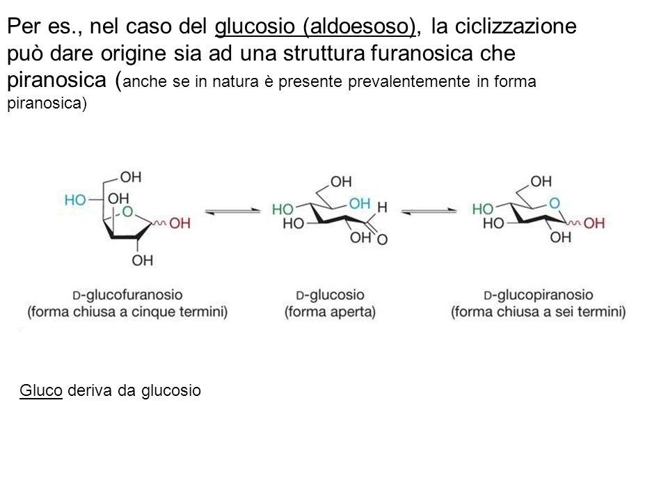 Per es., nel caso del glucosio (aldoesoso), la ciclizzazione può dare origine sia ad una struttura furanosica che piranosica (anche se in natura è presente prevalentemente in forma piranosica)