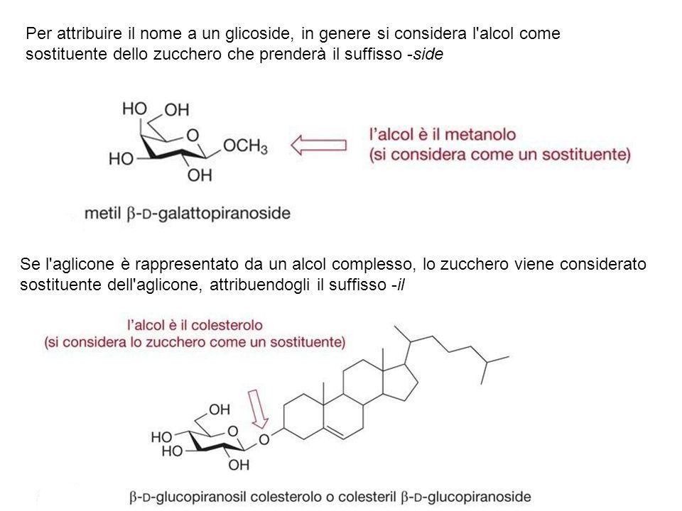 Per attribuire il nome a un glicoside, in genere si considera l alcol come sostituente dello zucchero che prenderà il suffisso -side