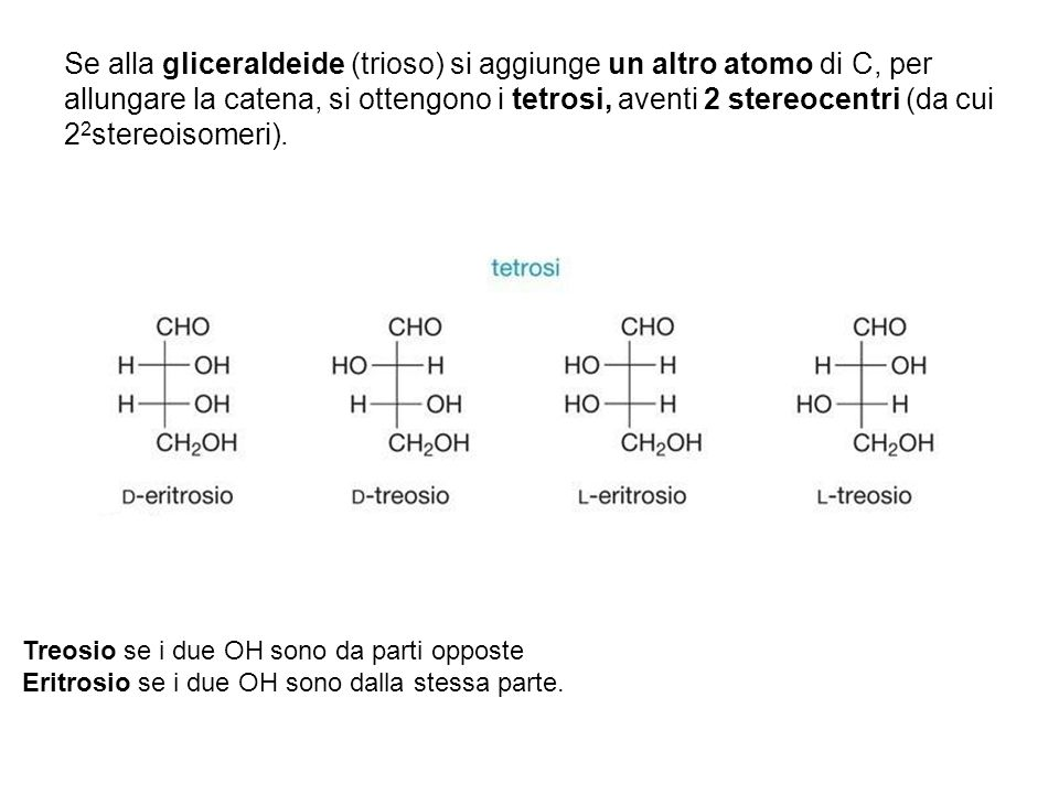 Se alla gliceraldeide (trioso) si aggiunge un altro atomo di C, per allungare la catena, si ottengono i tetrosi, aventi 2 stereocentri (da cui 22stereoisomeri).
