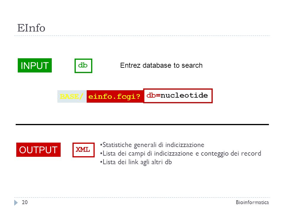 EInfo INPUT OUTPUT db BASE/ einfo.fcgi db=nucleotide XML