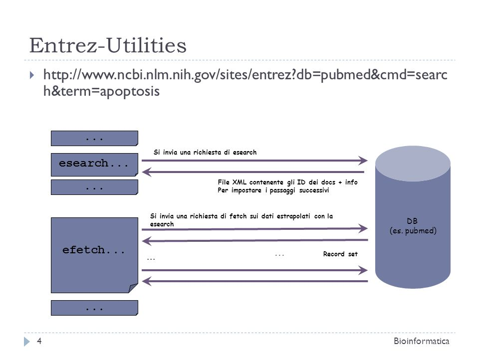 Entrez-Utilities http://www.ncbi.nlm.nih.gov/sites/entrez db=pubmed&cmd=searc h&term=apoptosis. ...