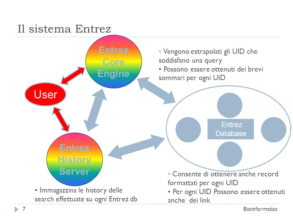 Il sistema Entrez User Entrez Core Engine Entrez History Server