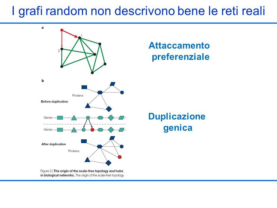 I grafi random non descrivono bene le reti reali