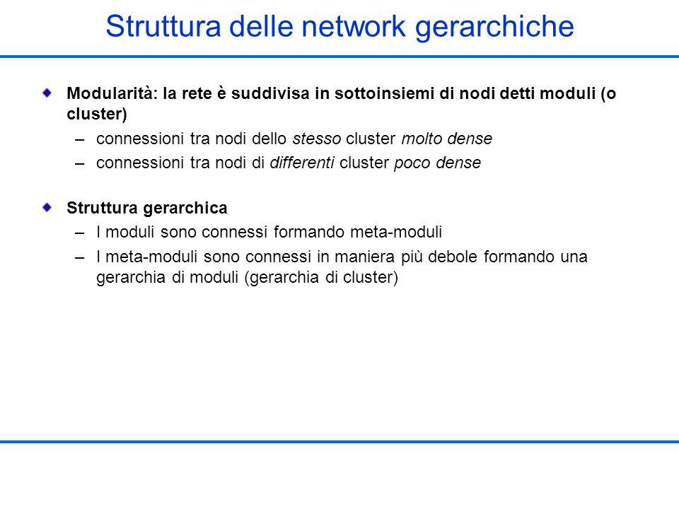 Struttura delle network gerarchiche