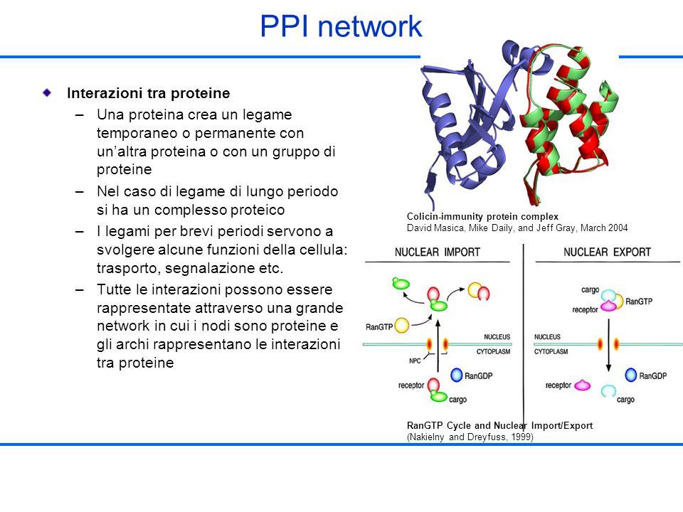 PPI network Interazioni tra proteine