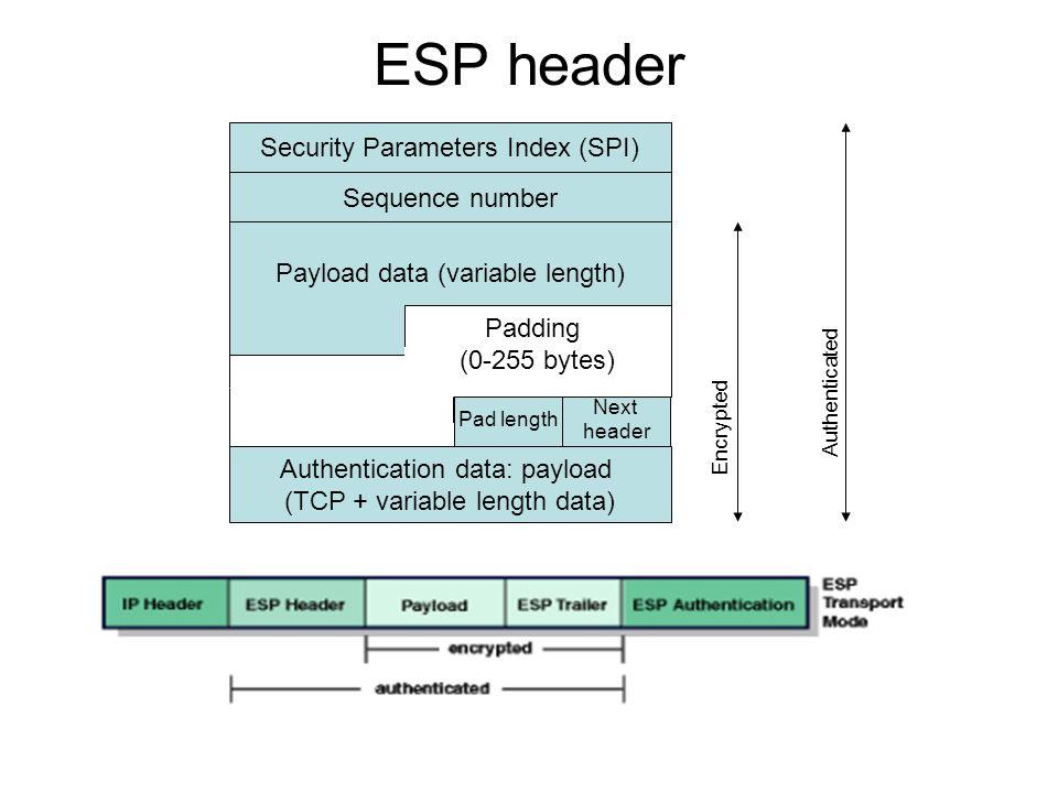 ESP header Security Parameters Index (SPI) Sequence number