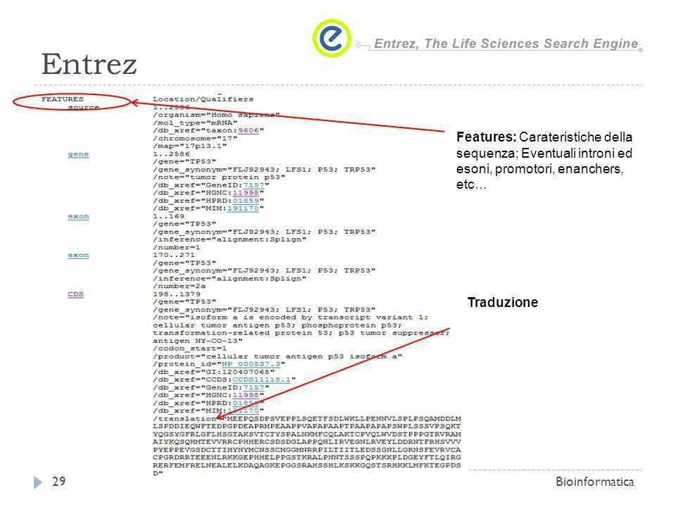 EntrezFeatures: Carateristiche della sequenza; Eventuali introni ed esoni, promotori, enanchers, etc…