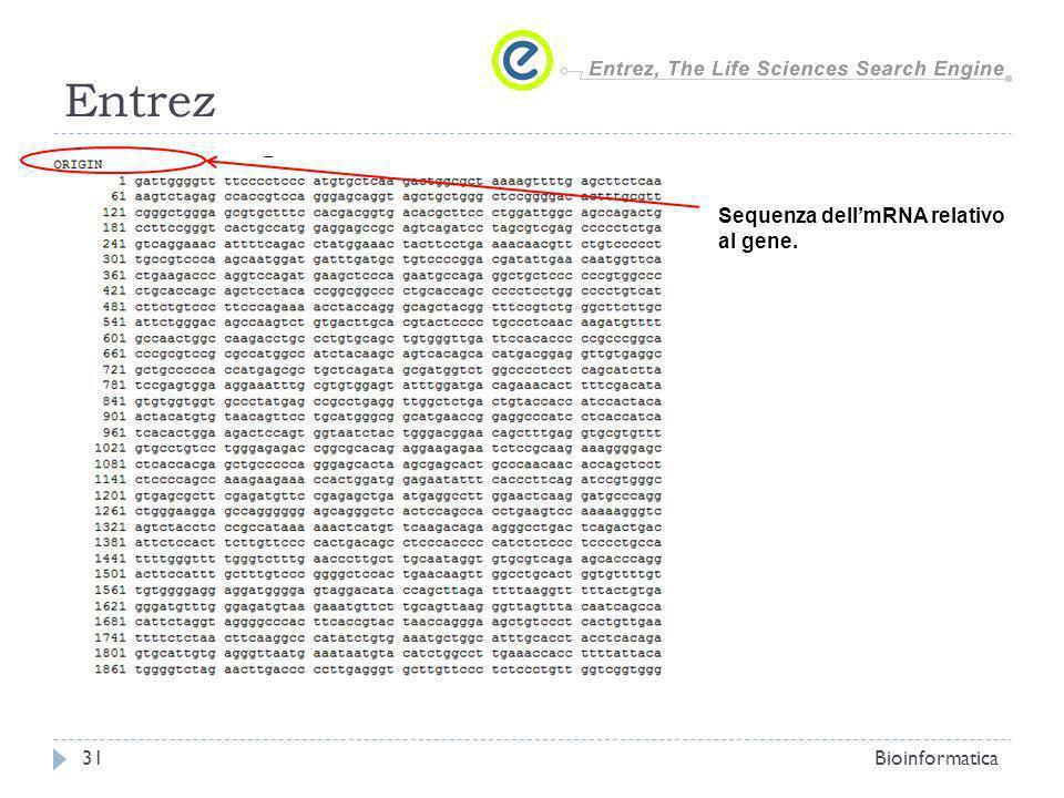 Entrez Sequenza dell'mRNA relativo al gene. Bioinformatica
