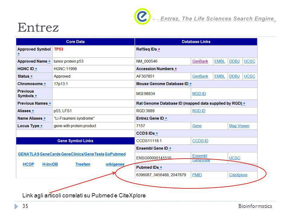 Entrez Link agli articoli correlati su Pubmed e CiteXplore