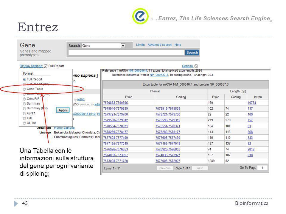 EntrezUna Tabella con le informazioni sulla struttura del gene per ogni variante di splicing; Bioinformatica.