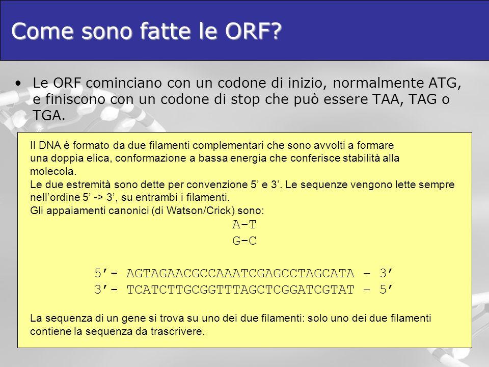 Come sono fatte le ORF Le ORF cominciano con un codone di inizio, normalmente ATG, e finiscono con un codone di stop che può essere TAA, TAG o TGA.