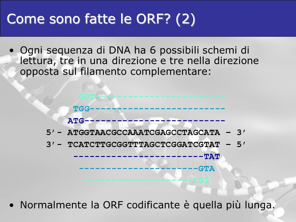 Come sono fatte le ORF (2)