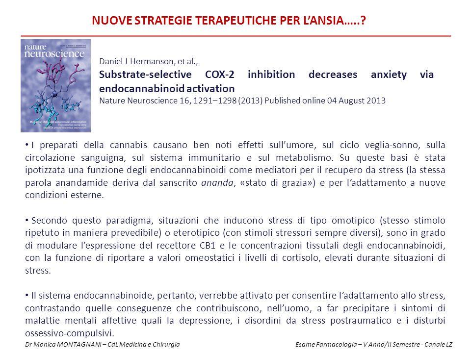 NUOVE STRATEGIE TERAPEUTICHE PER L'ANSIA…..