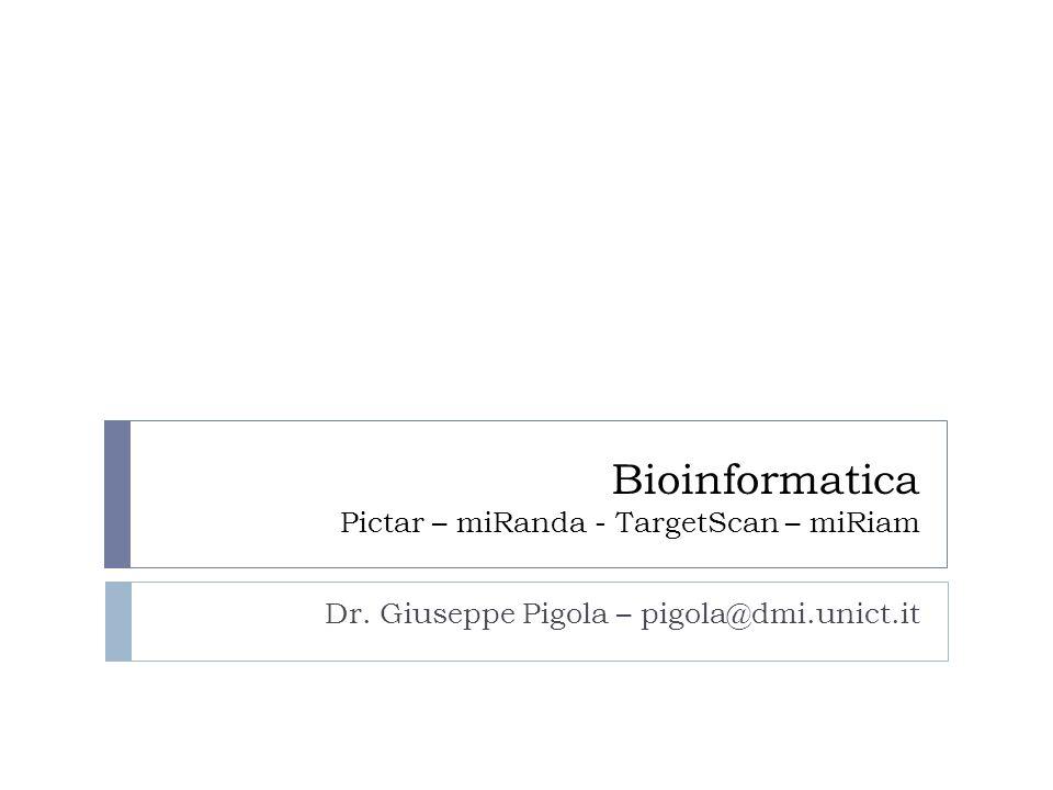 Bioinformatica Pictar – miRanda - TargetScan – miRiam