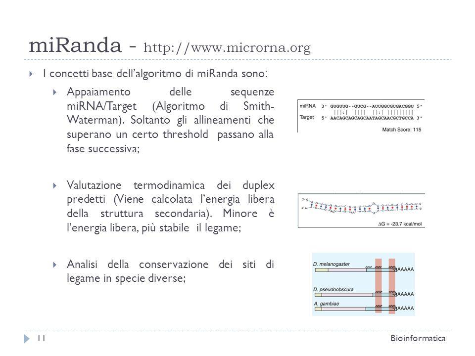miRanda - http://www.microrna.org