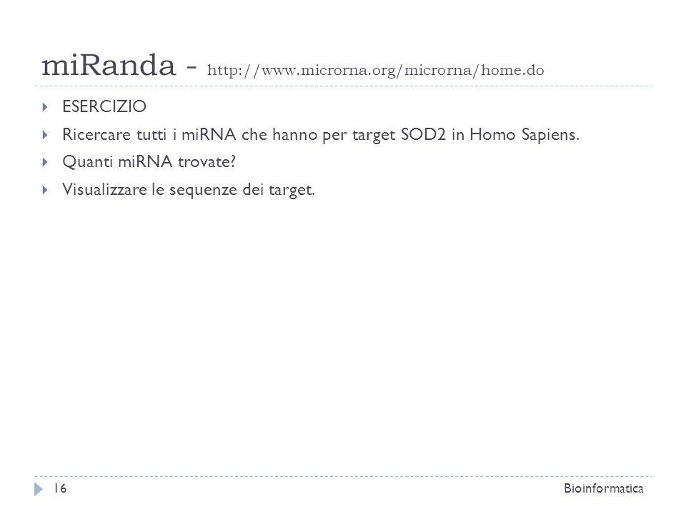 miRanda - http://www.microrna.org/microrna/home.do