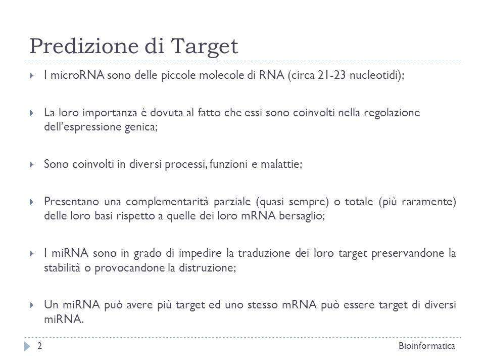 Predizione di Target I microRNA sono delle piccole molecole di RNA (circa 21-23 nucleotidi);