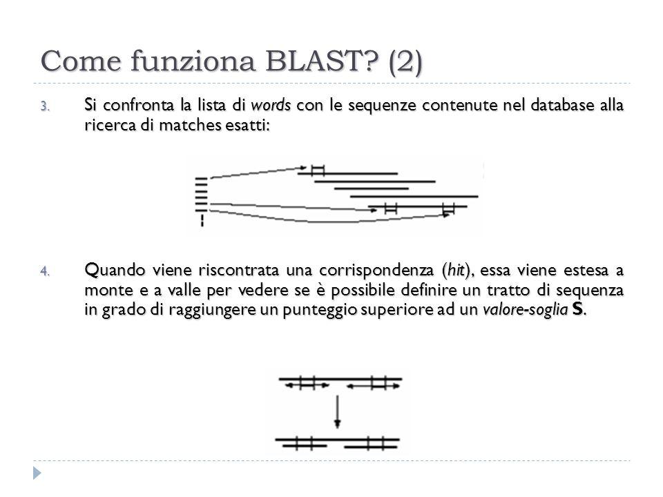 Come funziona BLAST (2) Si confronta la lista di words con le sequenze contenute nel database alla ricerca di matches esatti: