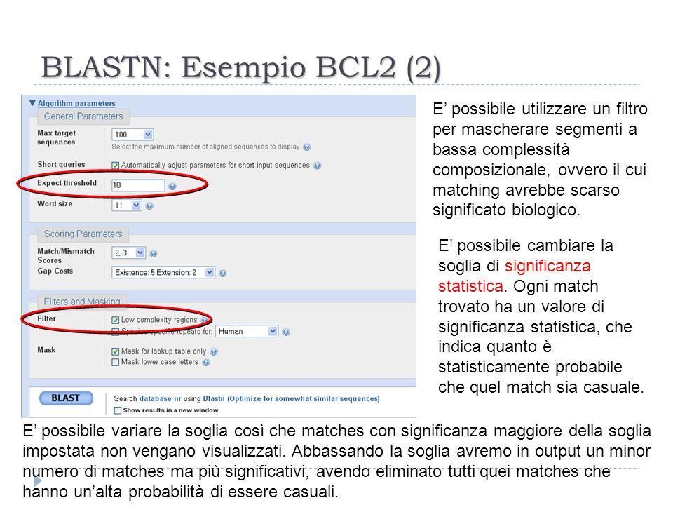 BLASTN: Esempio BCL2 (2)