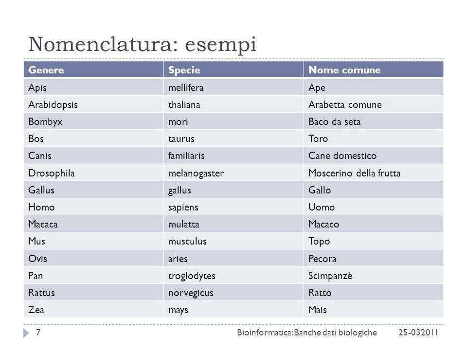 Nomenclatura: esempi Genere Specie Nome comune Apis mellifera Ape