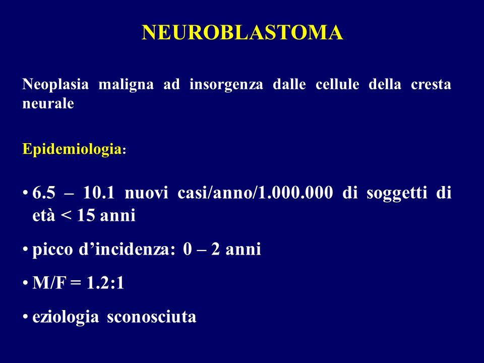 NEUROBLASTOMA Neoplasia maligna ad insorgenza dalle cellule della cresta neurale. Epidemiologia: