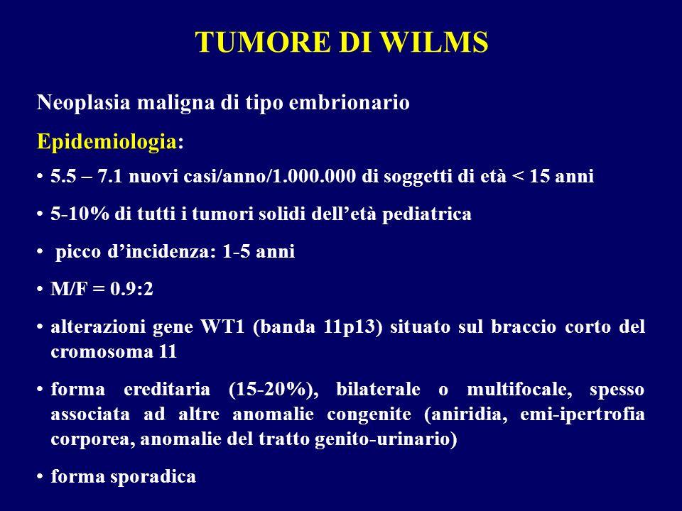TUMORE DI WILMS Neoplasia maligna di tipo embrionario Epidemiologia: