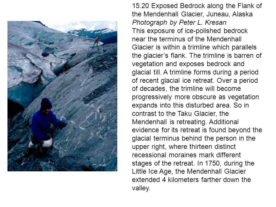 15.20 Exposed Bedrock along the Flank of the Mendenhall Glacier, Juneau, Alaska Photograph by Peter L. Kresan